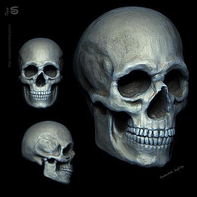 Surajit sen human scull sculpt study surajit sen 07012018