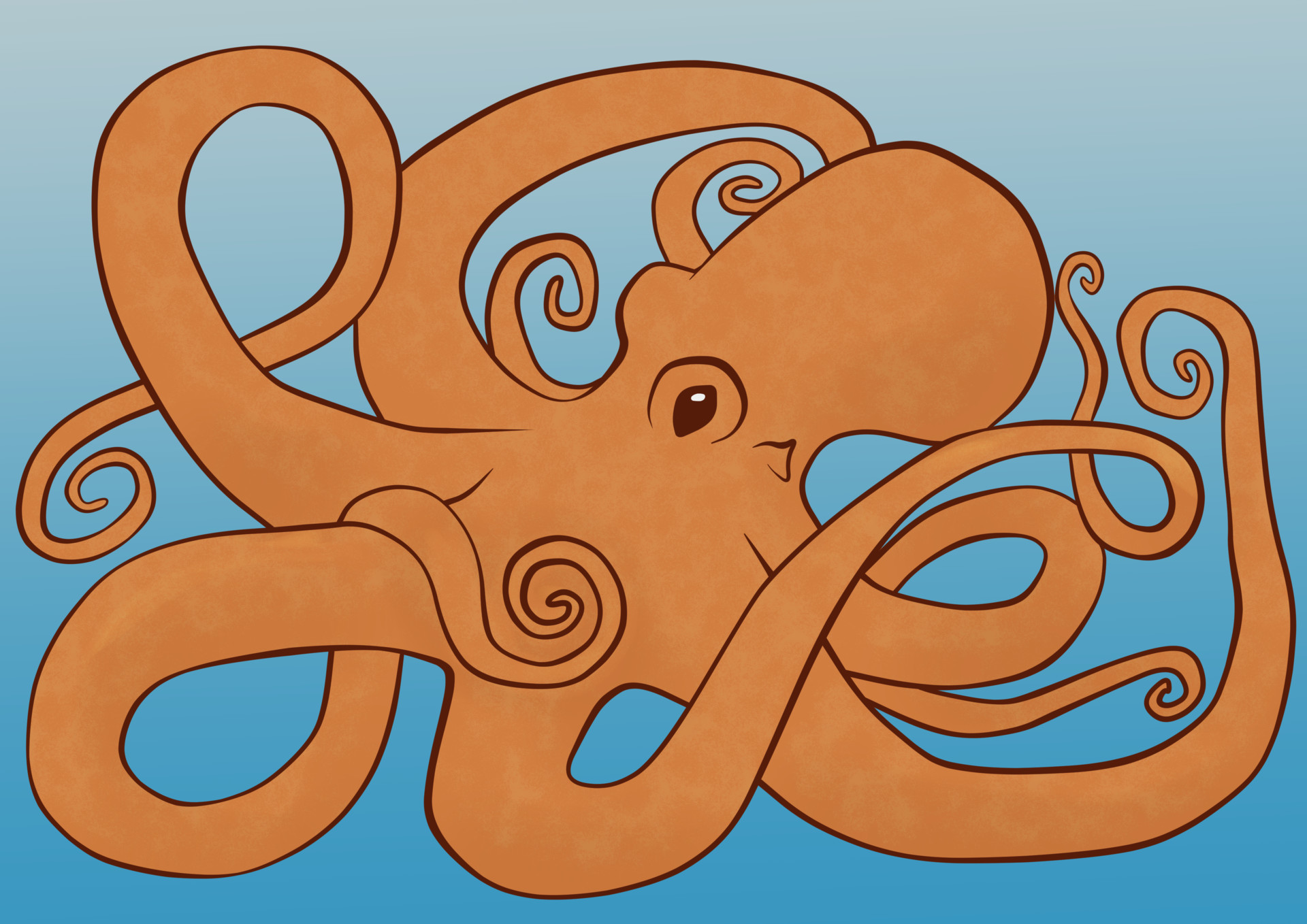 Jessica olney octopus coloring page colored