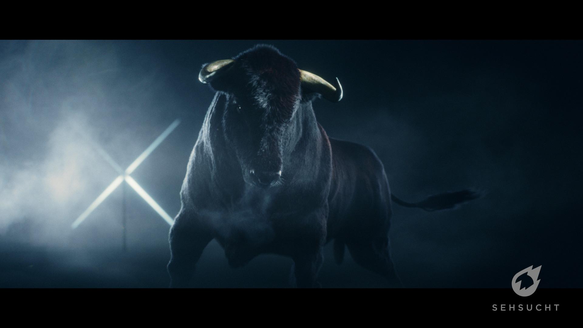 Thure koch bull 495