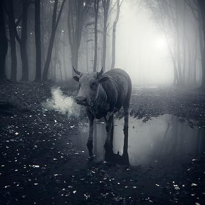 Andrej troha cow 03