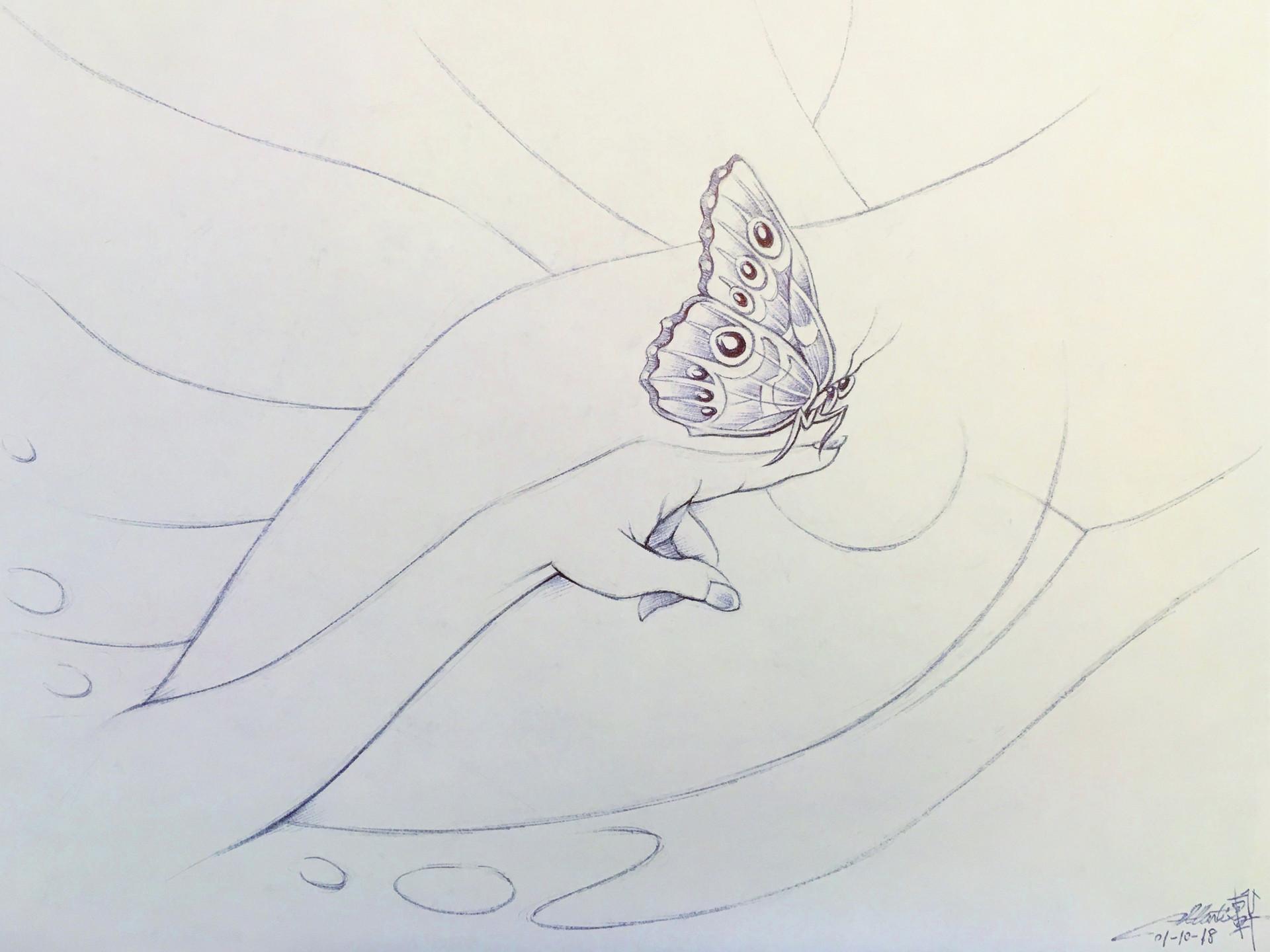 E lynx bluemorpho 011018a