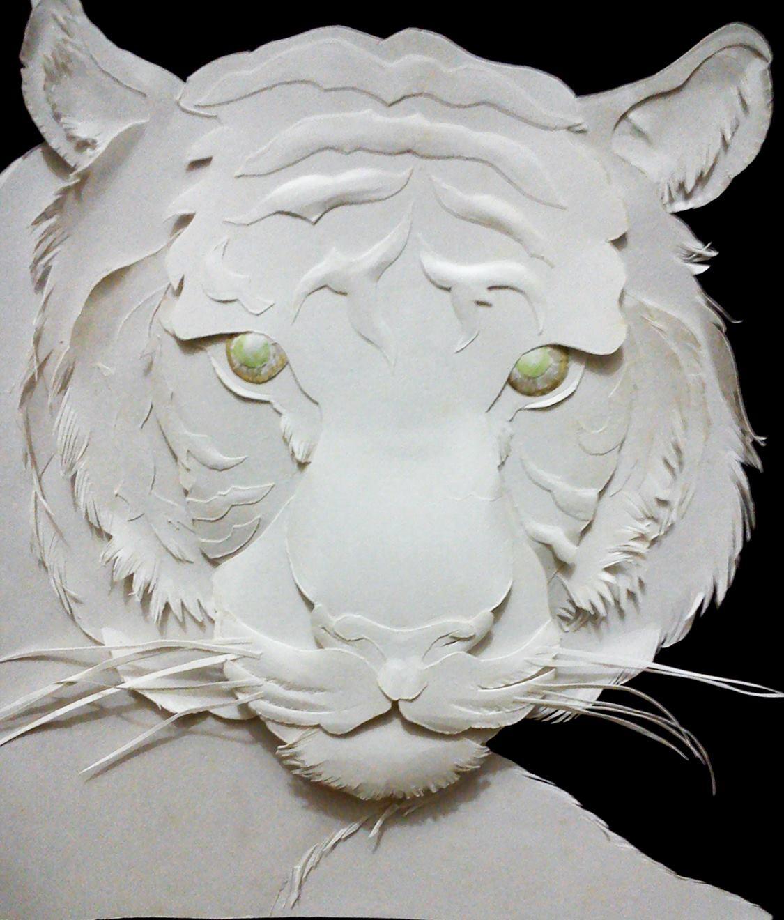 Rajesh r sawant tiger