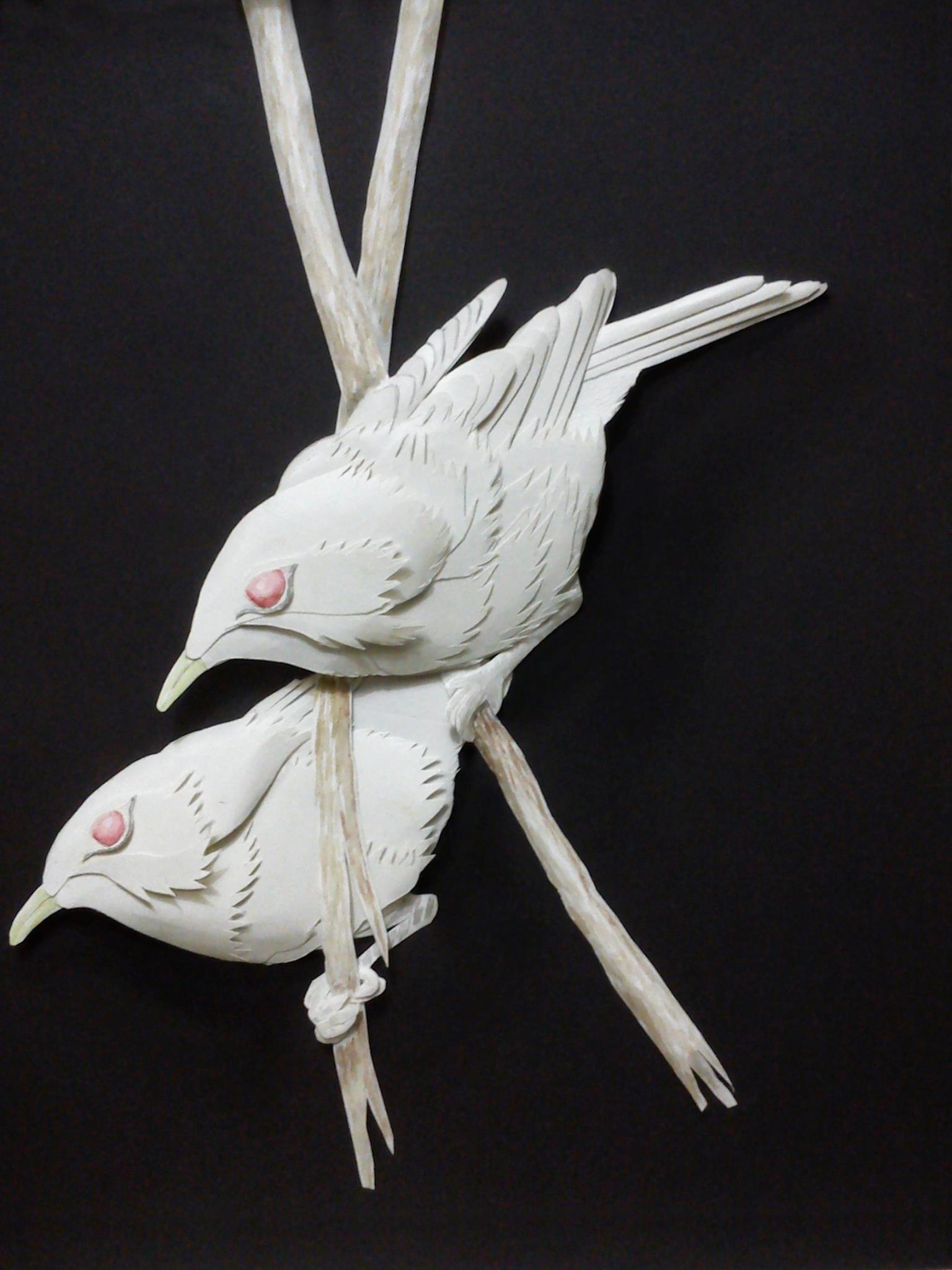 Rajesh r sawant 2 birds2