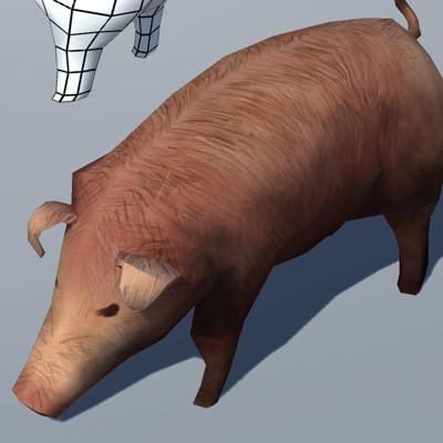 Devan browne 01 pig