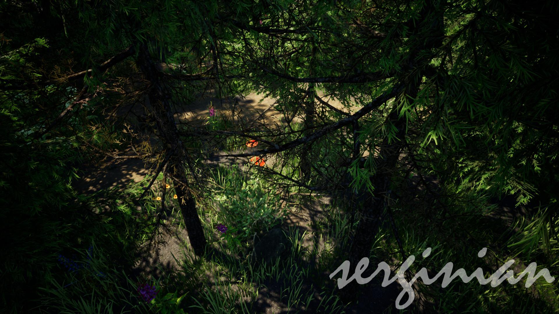Sergei aparin forest 32 bit pcd3d sm5 02 01 2018 11 29 44