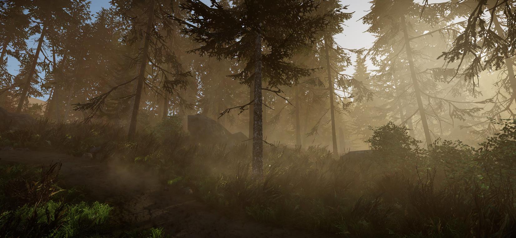 Sergei aparin forest