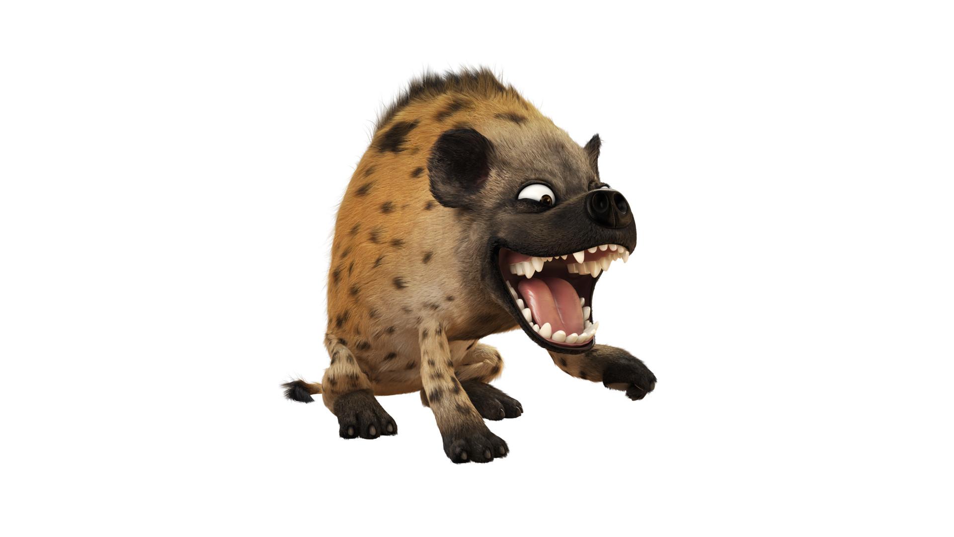 Duc phil nguyen hyene attitude 62