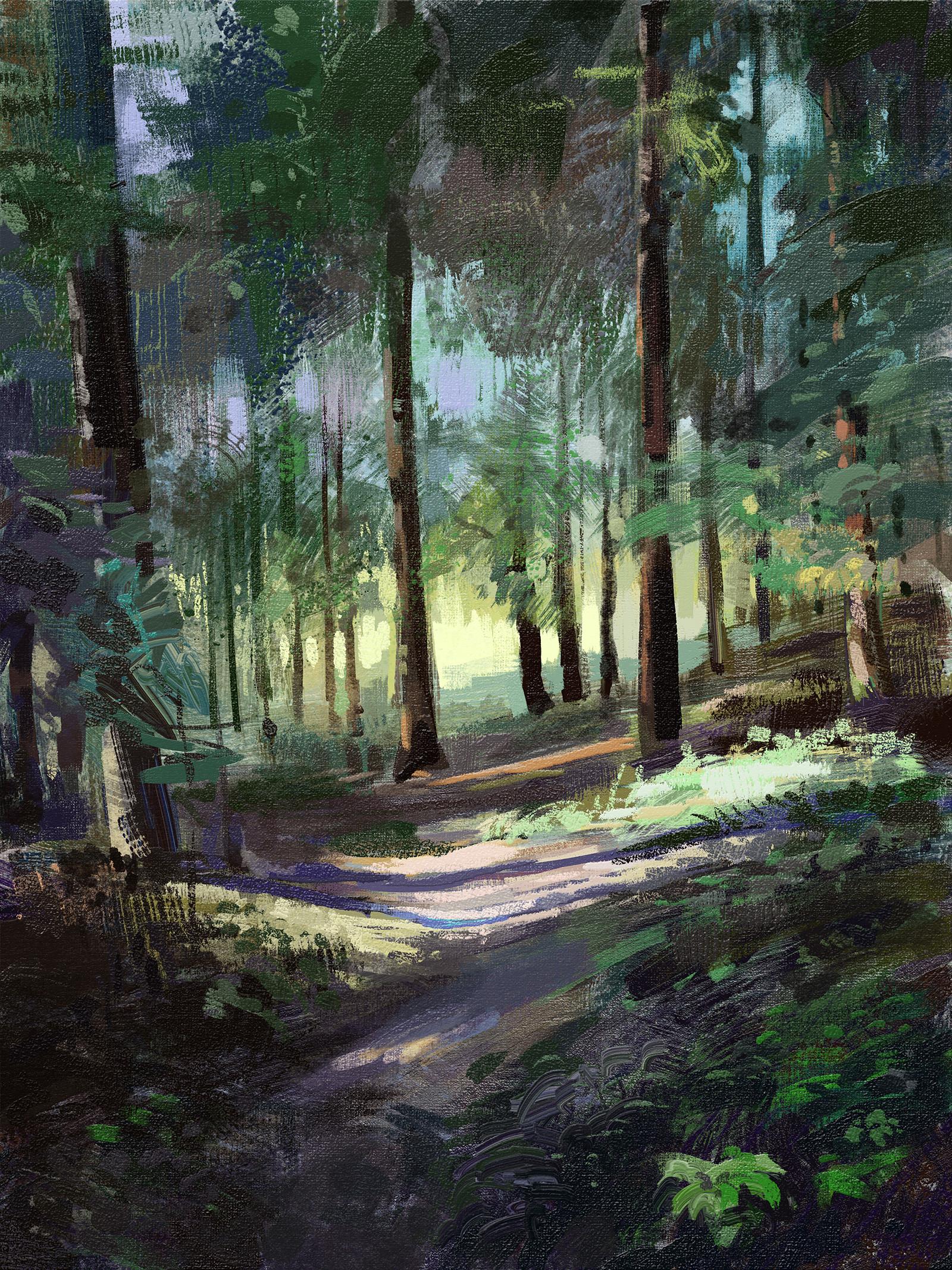 Tymoteusz chliszcz forest by chliszcz