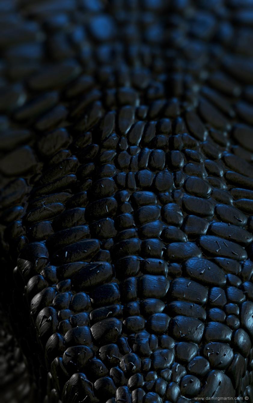 Dinosaur Skin Detail