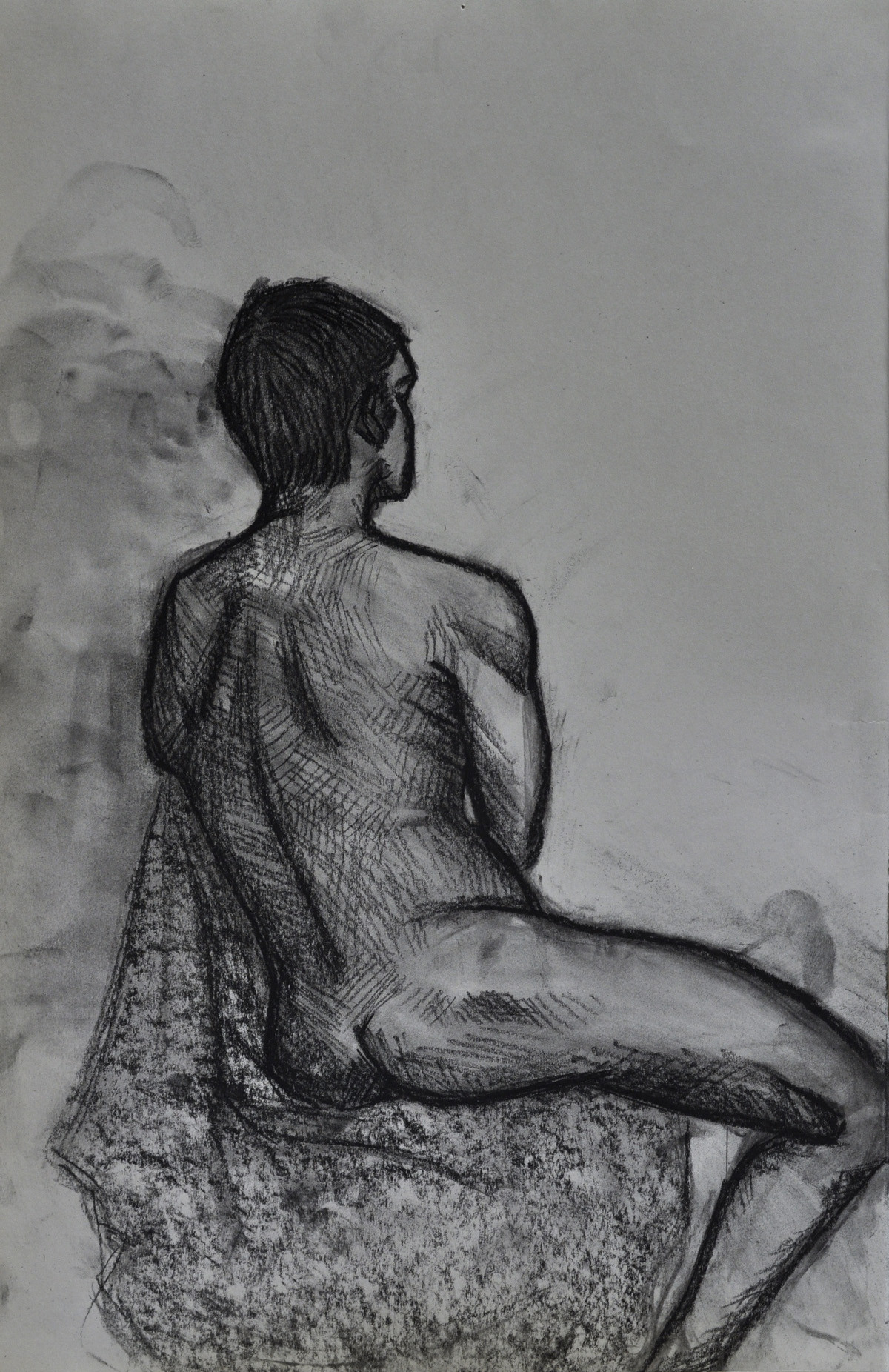 Vine and pressed charcoal