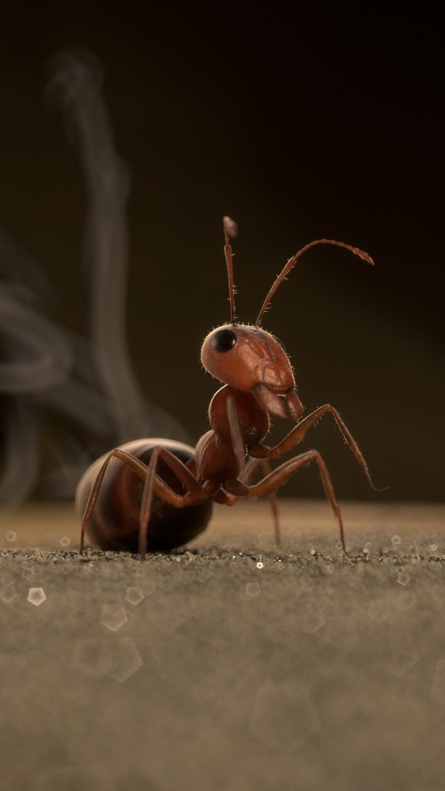 Ant - Prodigious (2017)