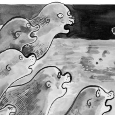 The lying sea-lion