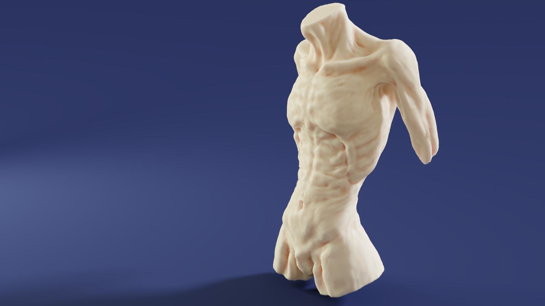 Mark van cooten torso