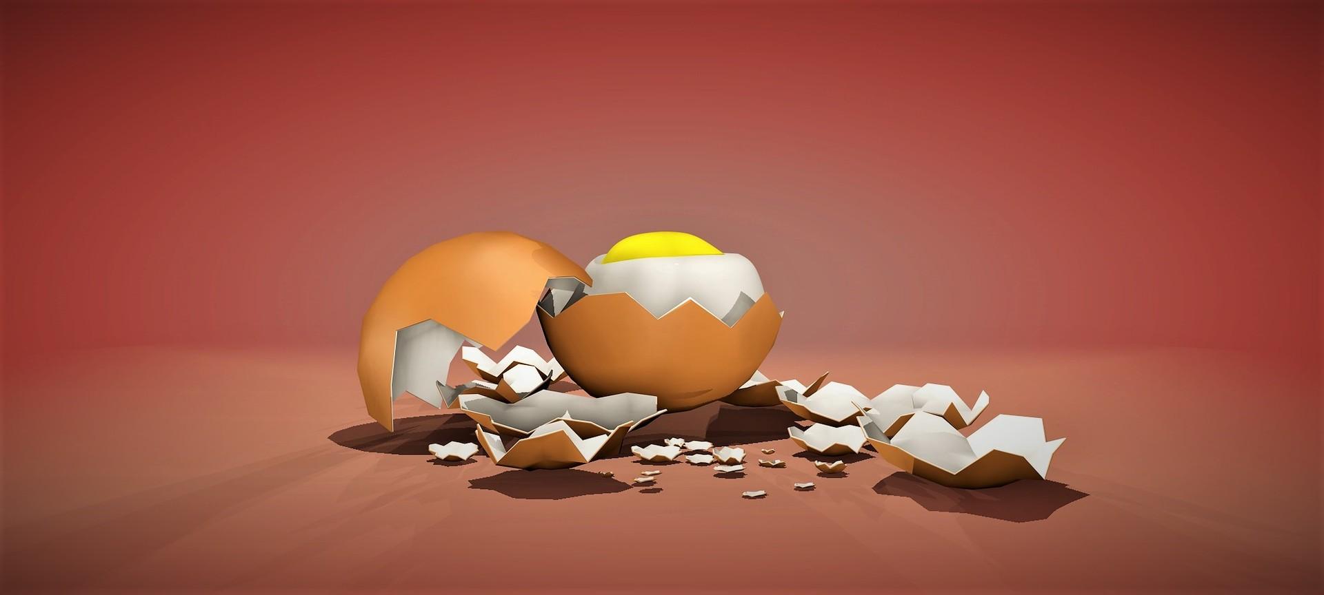 Viviana alvarado huevos