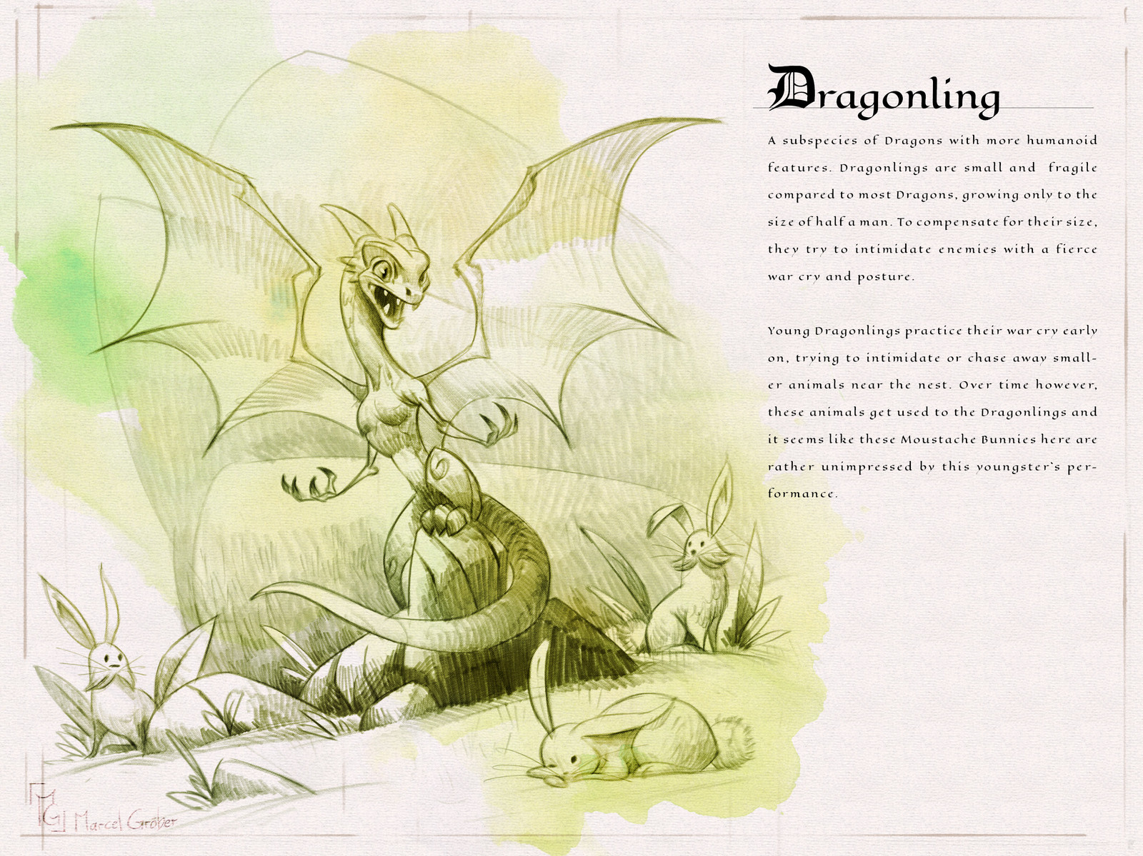 Page one of the  Dragon Compendium showing and describing the Dragonling
