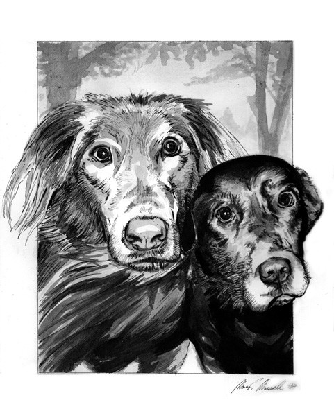 """Commissioned work, 8"""" x 10"""" inkwash drawing with tech pen accents."""