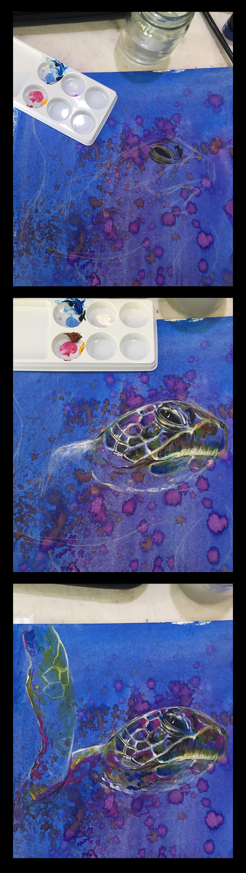 Angelica zurawski turtle progress