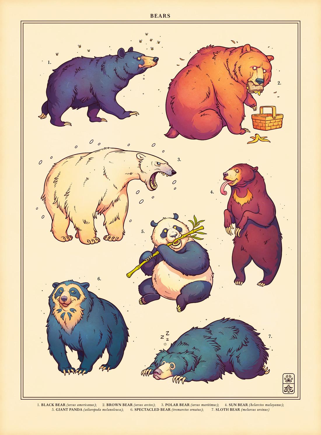 Jonatan iversen ejve bears1