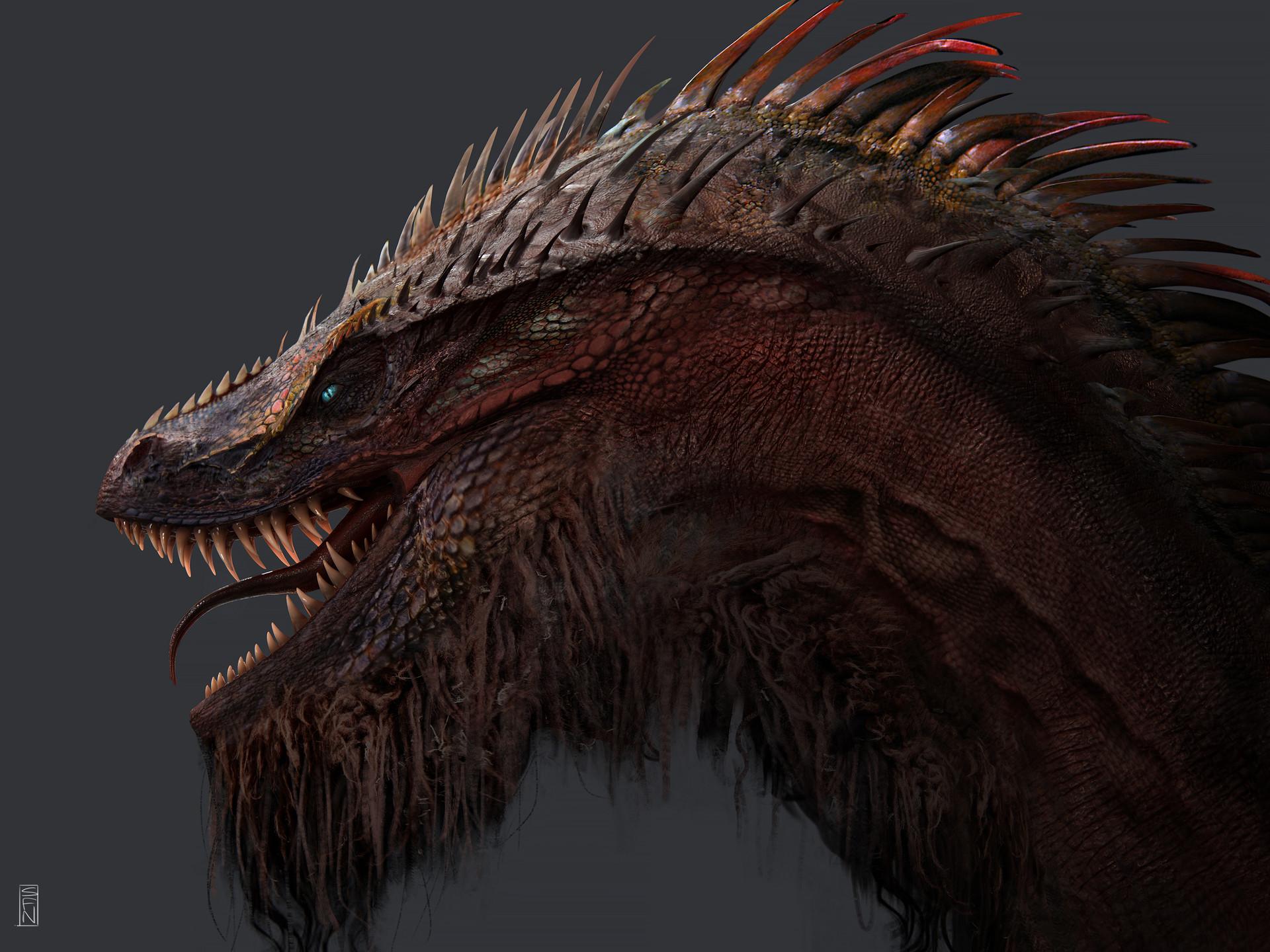 Soufiane idrassi dragon lowres