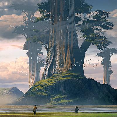 Raphael lacoste giant tree