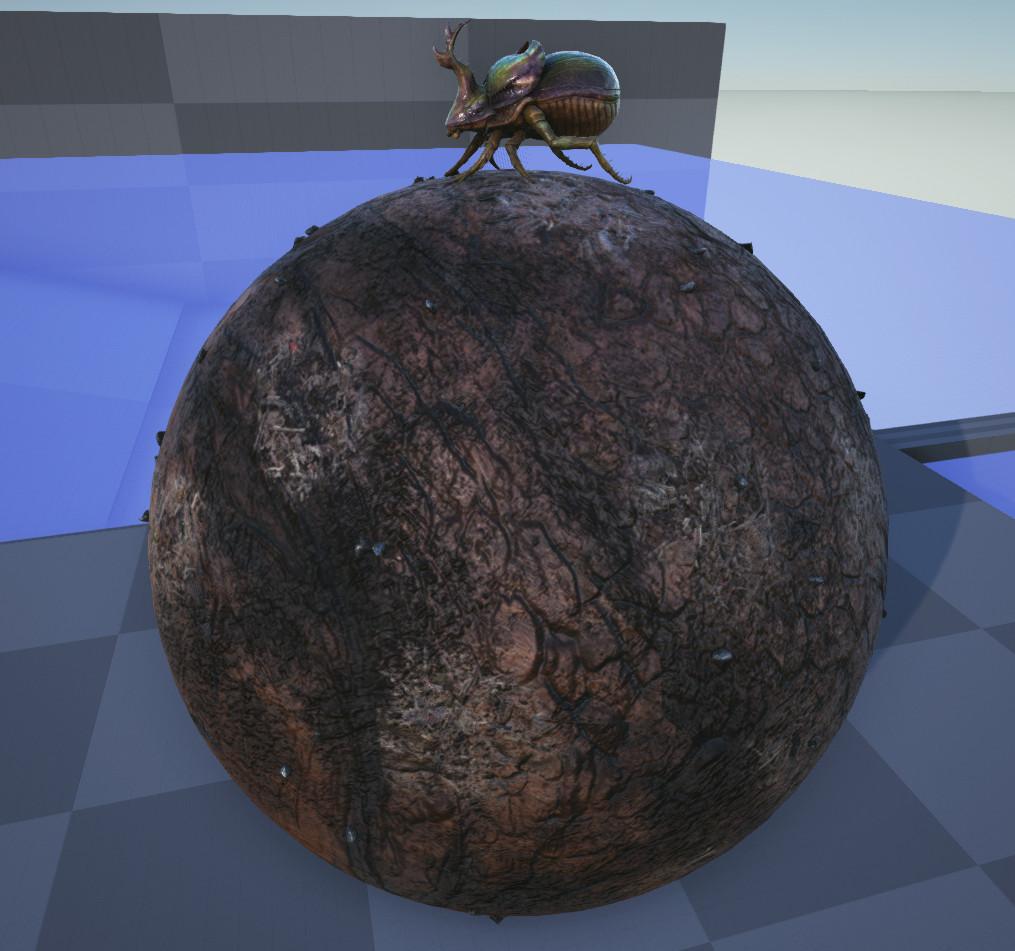 Matt Whitehead Dung Beetle Ball Ark Se The dung beetle eats animal feces. matt whitehead dung beetle ball ark se