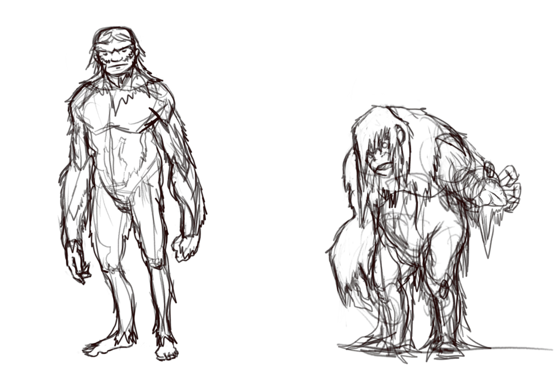 The first sketches for the Sasquatch and the Skunk Ape.