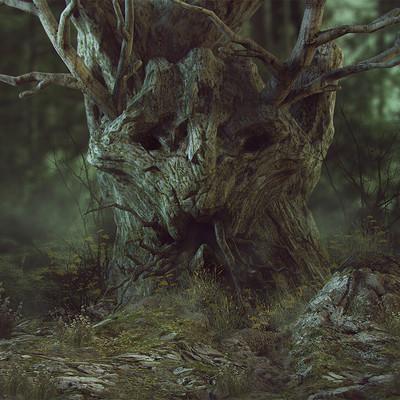 Ste flack ancienttree