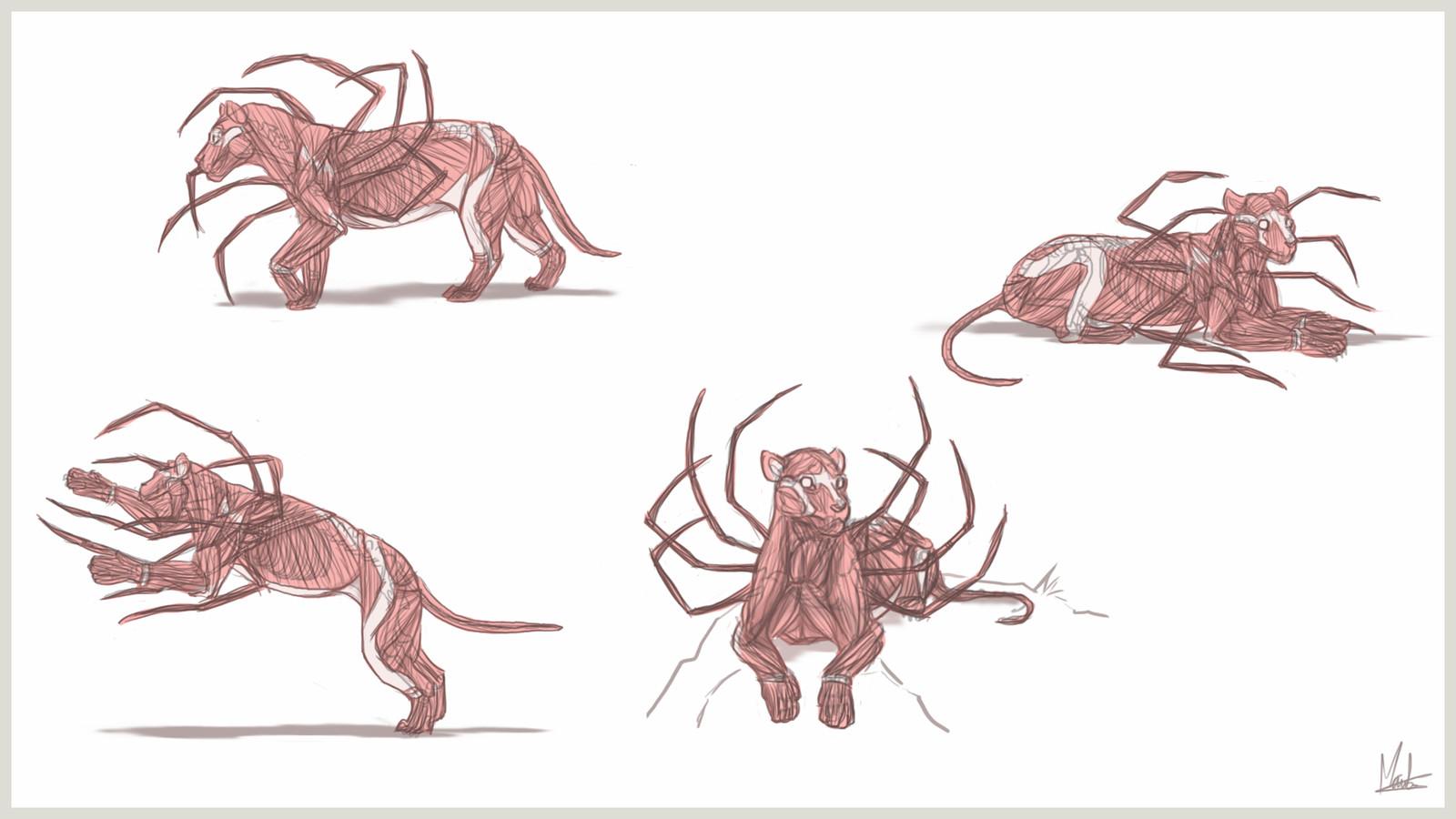 Sheet 4 - muscles