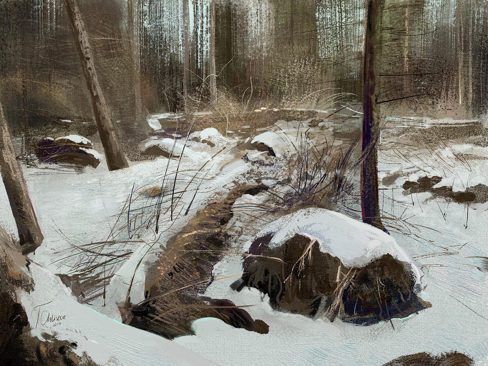 Tymoteusz chliszcz landscape33 by chliszcz