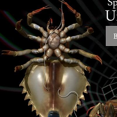 Dariusz andrulonis 09 b spiderunderwater
