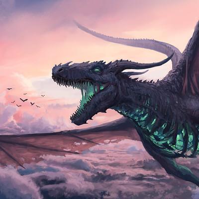 Stefan koidl dragonfly3