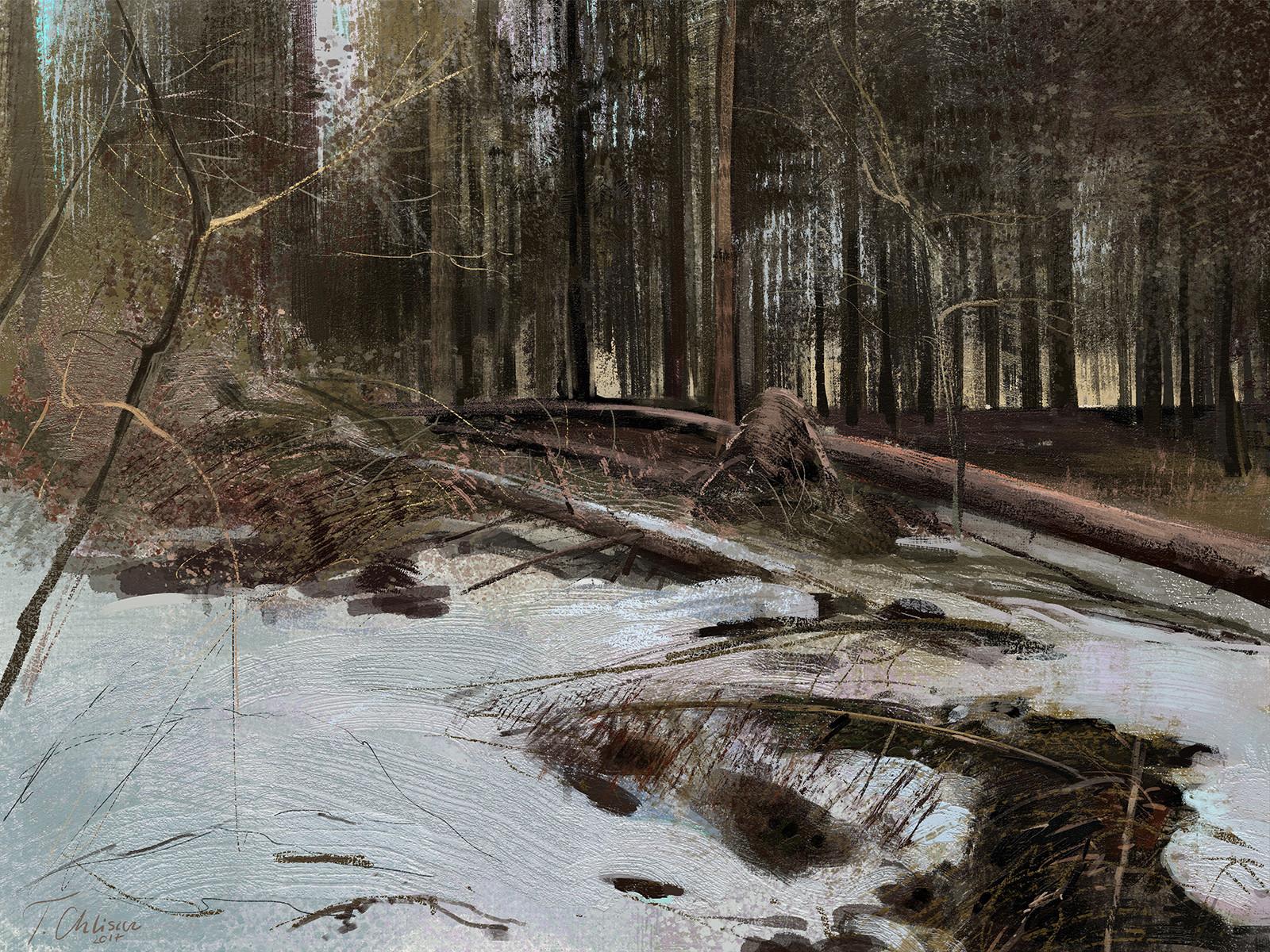 Tymoteusz chliszcz landscape30 by chliszcz