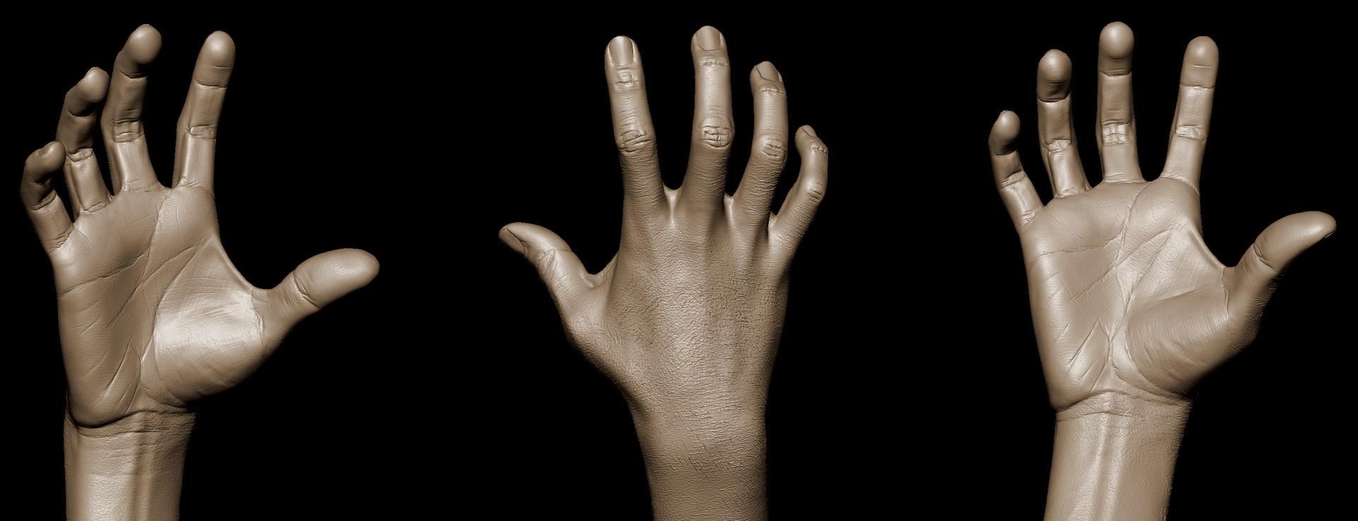 Daniel da Costa - Hand Anatomy in ZBrush - 3D Motive