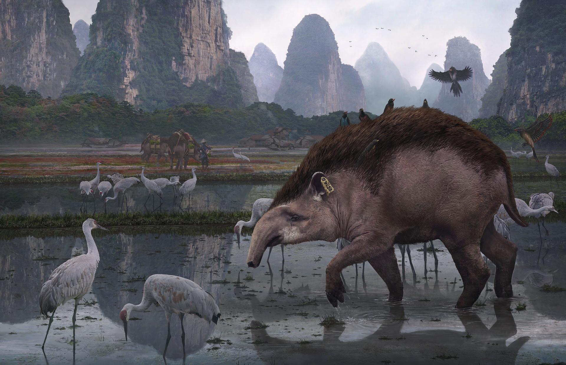 Jordi van hees 2 solo wild tapir render v40 final small