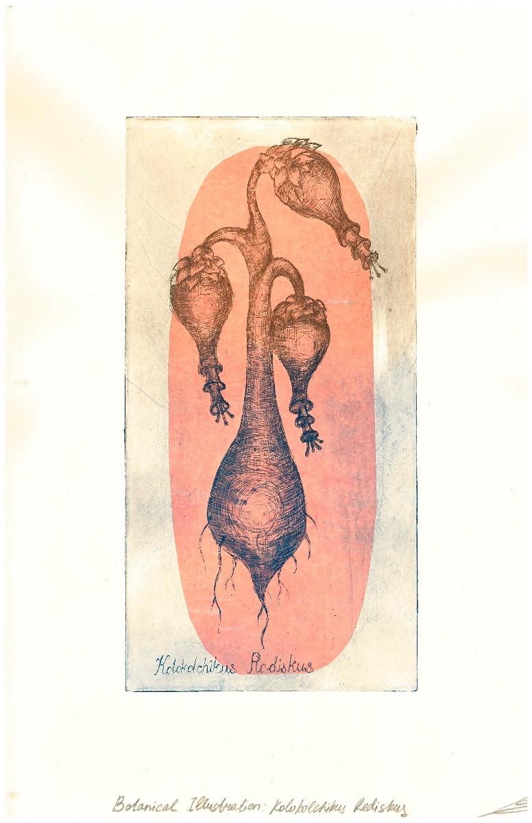 Ekaterina rina vopiyashina botanic1