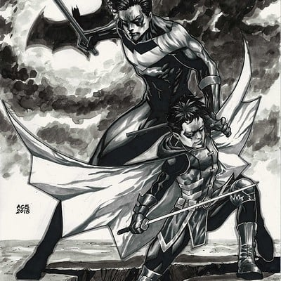 Ace continuado nightwing and robin copy