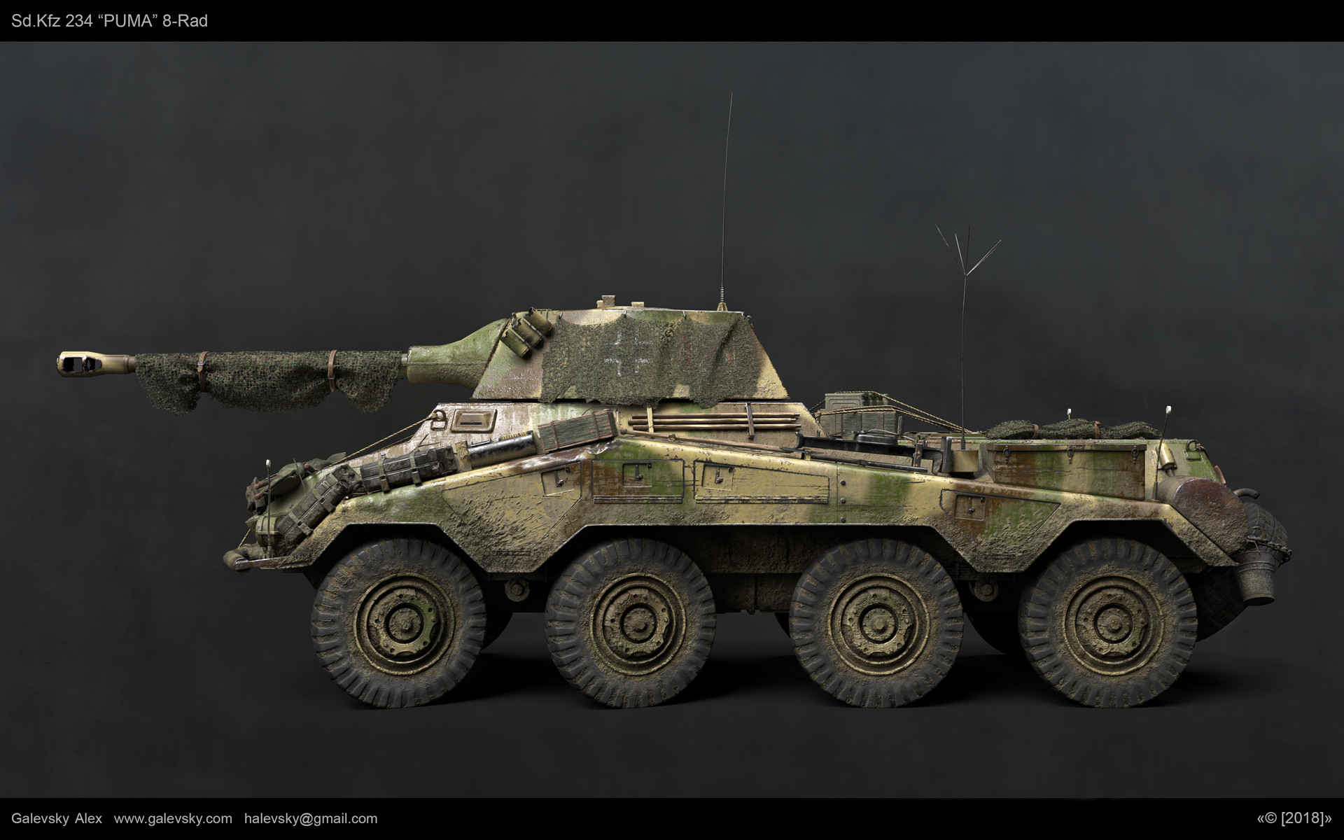 Aleksander galevskyi model fin 09