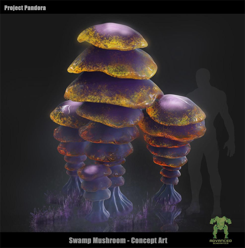 Alexander boluzhenkov swamp mushroom