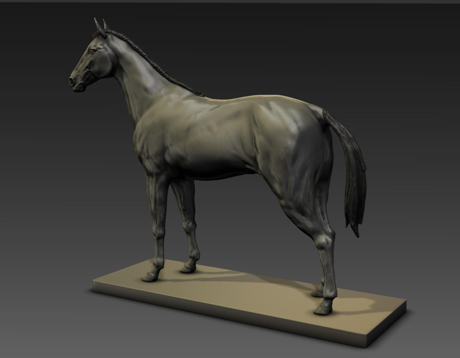 Sergio gabriel mengual horse pose mud still7