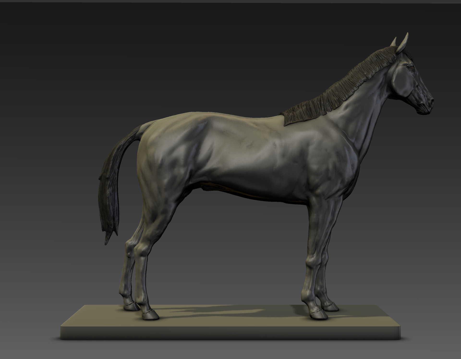 Sergio gabriel mengual horse pose mud still5