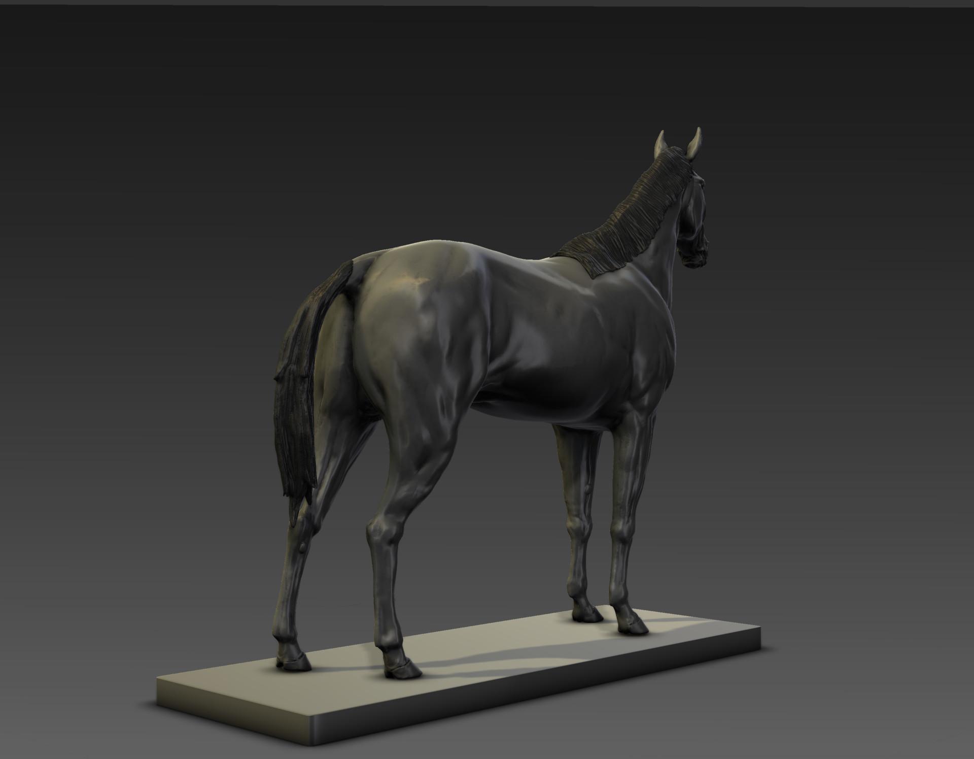 Sergio gabriel mengual horse pose mud still6