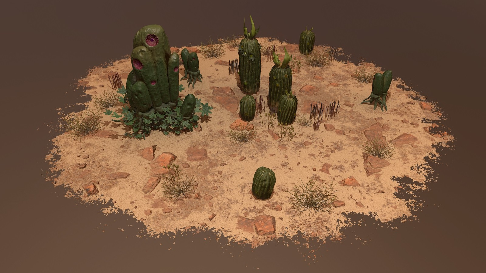 Environment - Desert with cactus