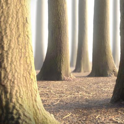 Bex fx trees