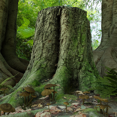 Hadi beheshti tree b 5