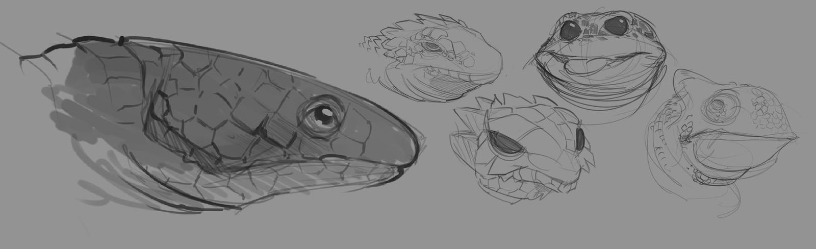 Lizard studies for Godzilla creature treatment