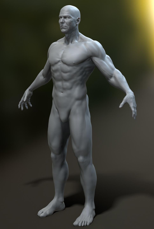 Kirk Farrell - Male Anatomy Study
