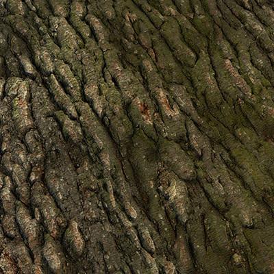 Muhammx sohail anwar trunk 001