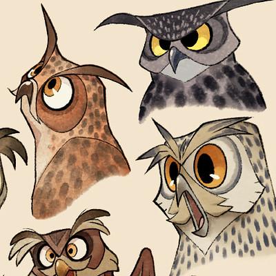 Liisa kareranta owls 740
