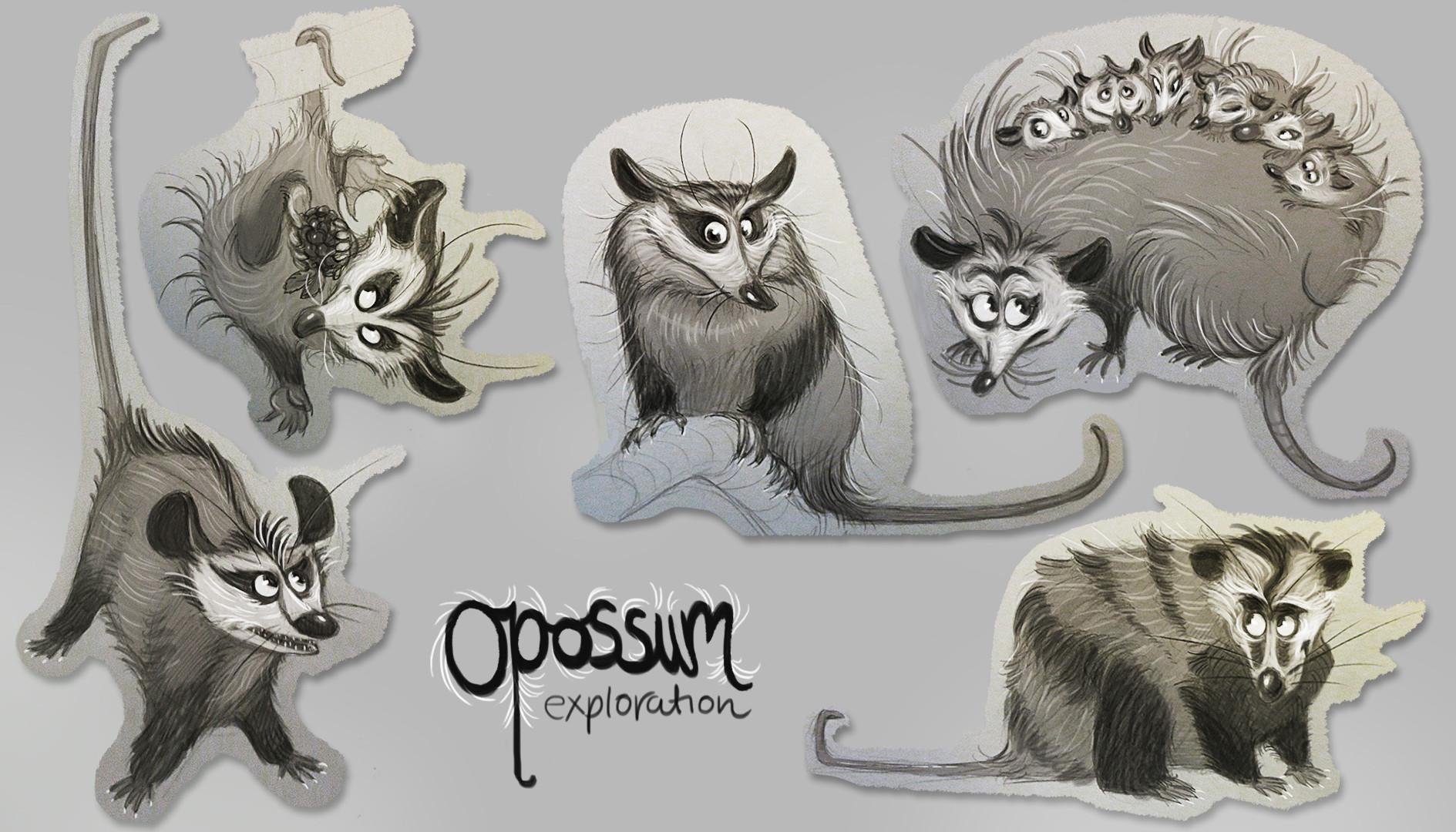 Vivien lulkowski opossum