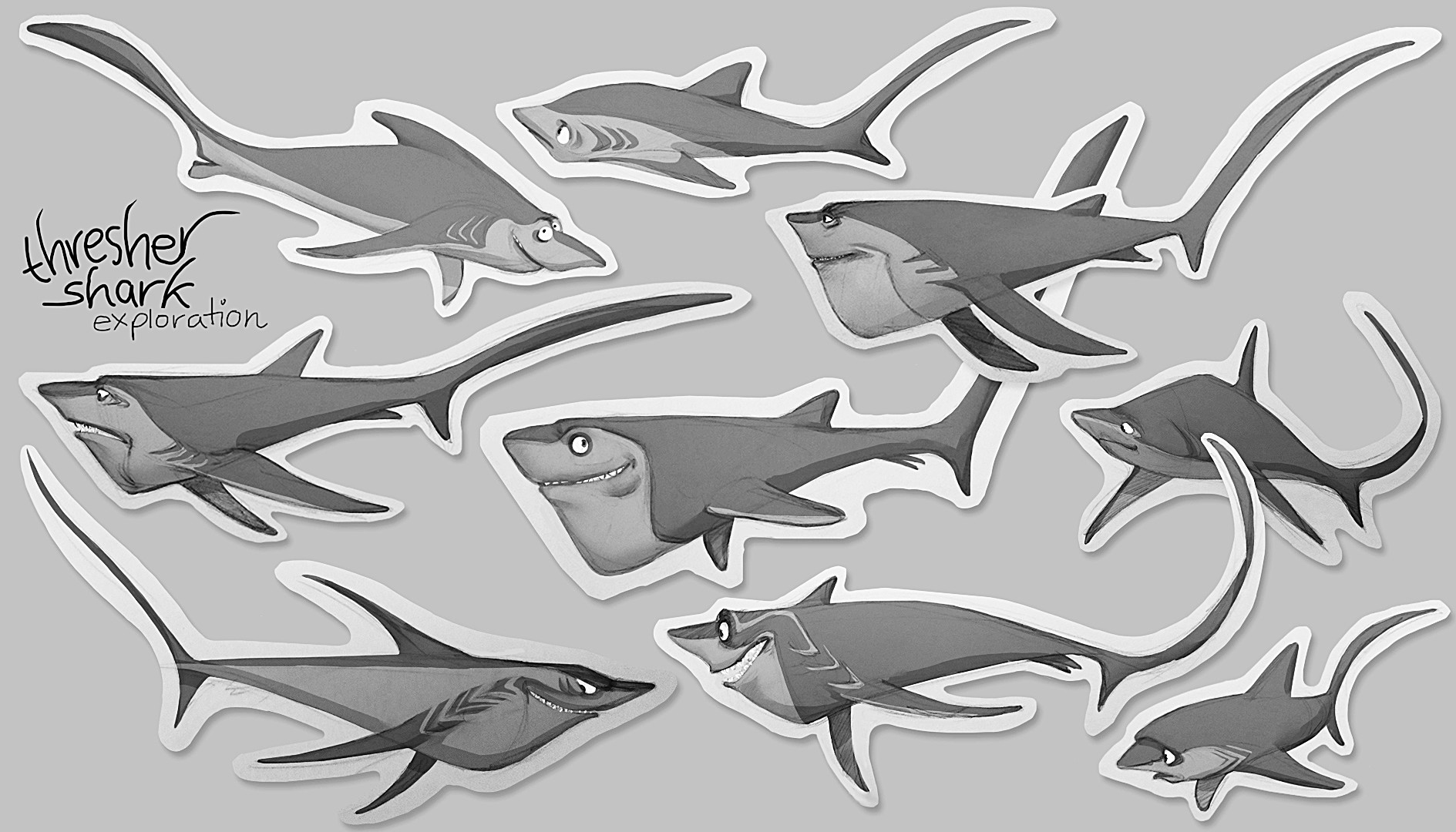 Vivien lulkowski thresher shark